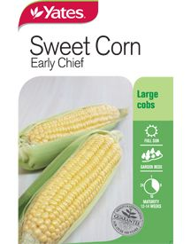 Produces large cobs carrying sweet, golden yellow kernels in even rows. Sweet Corn, Seeds, Vegetables, Garden, Candy Corn, Garten, Lawn And Garden, Vegetable Recipes, Gardens