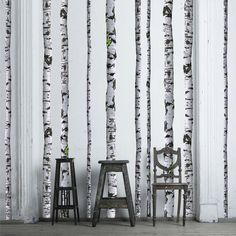 Found it at AllModern - Super Real Birch Wall Decal