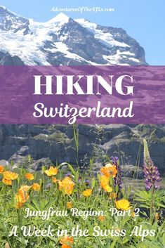 3 Days Hiking in the Jungfrau Region of Switzerland with Kids. Join us as our family travels to Wengen, Switzerland, for a week of hiking in one of the most beautiful places in the world! What an amazing travel destination! #travel #wengen #jungfrau #switzerland #europe #familytravel #traveltheworld #traveldestinations #hiking