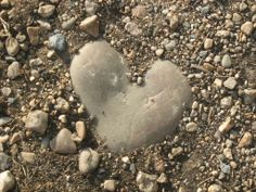 nature can be captured by love! i took this pic in Hartenbos, RSA.