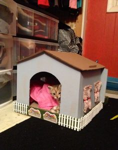 Today I became an official cat lady by making this house for my kittens. I started with a $10 cardboard Kitty Bungalow from Petco. Then I painted it, cut curtains from some fabric, and added a picket fence from Michaels. #diy