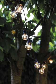 Add some vintage style lighting to you garden with these LED Oscar lights. Whether you string them through tree branches or drape them over a fence or gazebo they will be the focal point of any area. These party lights designed by Sirius ca Outdoor Lighting, Outdoor Decor, Spring Party, Party Lights, Create Space, Transparent, Light Decorations, String Lights, Bird Feeders