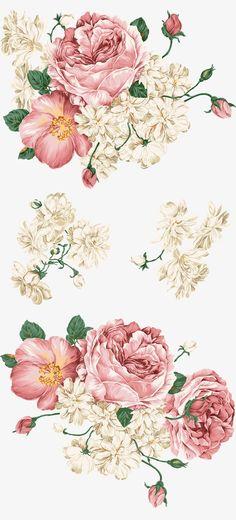 цветы, пион, творческие цветы PNG и PSD