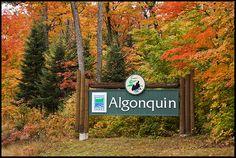 Algonquin Park - West Gate Sign