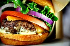 The next Five Guys: 12 small burger chains that might take over the world