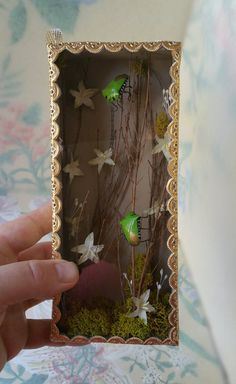 Unique and Charming Stink Bug Shadow Box with Vintage