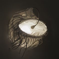Catfish—predacious dreamy lighting object by Spacelights