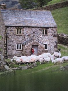 Love the old architecture, the location, the green, the animals and the person in the door. Yes it is idyllic.