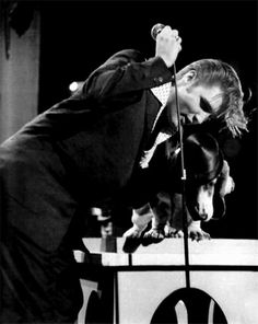 steve allen show...elvis hated singing to a dog, and steve hated elvis
