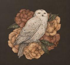 Snowy Owl Art Print by Jessica Roux Deer Print, Fox Print, Giclee Print, Bird Barn, Barn Owls, Framed Art Prints, Canvas Prints, Owl Canvas, Snowy Owl