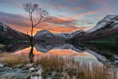 Lone Tree - Buttermere Lake District UK. A re-processed version of winter's lone tree sunrise shot! Using a more manual blending process than the original use of Lightroom's HDR merge and better colour corrections. Still to this day one of the most stunning sunrises i have seen!