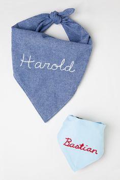 DIY personalized pet bandana for Design Sponge by Jessica Marquez