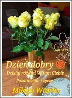 Plants, Polish, Pictures, Plant, Planets