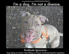 BSL is taking our dogs and we need to fight it until it's only a shameful moment in history!