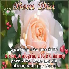 Maria Jose, Rose, Flowers, Plants, Good Morning Photos, Good Morning Wishes, Strong Nails, Pink, Plant