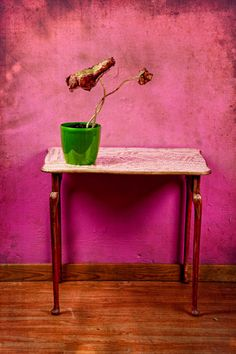 The colorful decay of plants  by Carla Broekhuizen