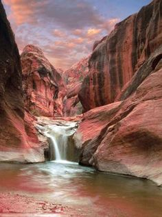 Red Cliffs, Utah has several marked hiking trails that will lead you through beautiful red rock formations and narrow canyons filled with pools of water. #travel #tla #tourism #trip #tourleader #traveling #traveler #touroperator #tourguide