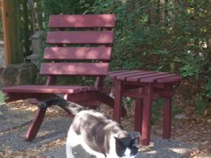 Comfy Cedar Chair for Home & Garden Beautiful by laughingcreekprod