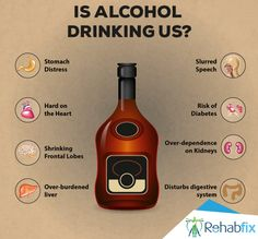 Check out how effects to your body? Frontal Lobe, Alcohol Rehab, Indian Food Recipes, How To Stay Healthy, Alcohol Effects, Drinking, Alcoholic Drinks, Yummy Food, Eat