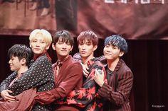 Woozi, Wonwoo, Jeonghan, Choi Hansol, Seventeen Scoups, Hong Jisoo, Joshua Hong, Adore U, Seventeen Wallpapers
