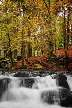Cascades à Gérardmer