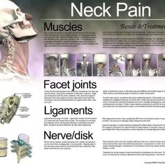 Neck pain info - anatomy of the neck, prevent neck pain by understanding the anatomical structure and pick up some natural pain relief remedies  http://painkickers.com/discount-coupon/