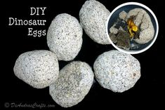 Picture of DIY Dinosaur Eggs