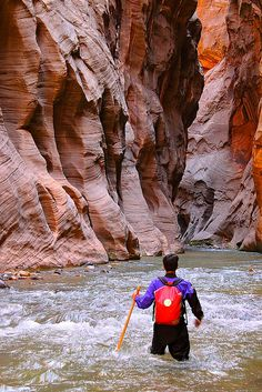 "Another pinner said: ""The Narrows, Zion National Park - This view never gets old for me. I can't imagine what it would be like to hike ""the narrows"". Zion National Park, National Parks, Oh The Places You'll Go, Places To Visit, Utah, Hiking The Narrows, Arizona, Wyoming, Adventure Is Out There"