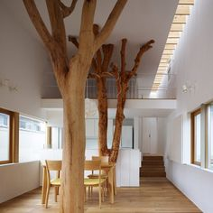 A slideshow of architecture featuring indoor trees.