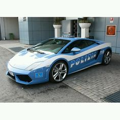 I would be a police girl any day if I drove a Lamborghini :)