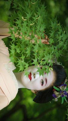 maiko 舞妓 Katsuna 勝奈 Kamishichiken 上七軒 KYOTO JAPAN