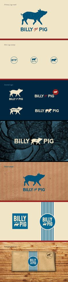 brand identity / BILLY the PIG. cerdito, cerdo