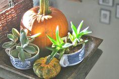 Fall decorating, fall centerpiece / domesticphilosophy