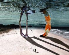 Animales y realidad en el surrealismo de la artista mexicana Karen Cantuq