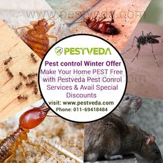 #PestControl Winter Offer Flat 10% discount on all services Prevent Pest to enter your Home with expert Pest control services offered by PestVeda Contact- 011-69418484  www.pestveda.com