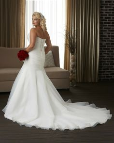 Sweetheart Chapel Train Organza A Line Plus Size Wedding Dress Wbo0017