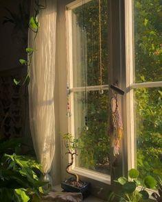 Plant Aesthetic, Nature Aesthetic, Aesthetic Room Decor, Aesthetic Green, Flower Aesthetic, Dream Rooms, Dream Bedroom, Room Ideas Bedroom, Bedroom Decor