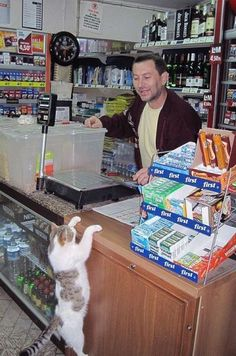 Sir, would you have any catnip in stock?