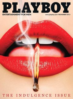 Best magazine covers of 2013 - Playboy