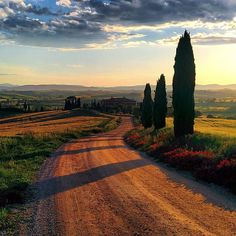 Want to Know the best places to visit in Italy? Our photo gallery gives you a taste of a trip to Italy so you can start dreaming about it even before you travel! Siena Italy, Tuscany Italy, Italy Italy, Sorrento Italy, Capri Italy, Naples Italy, Venice Italy, Como Italy, Puglia Italy