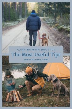 These 11 tips for camping with dogs will make it easier to bring your dog camping. Use these tips and advice to bring your dog on your next camping trip. Family Camping, Tent Camping, Camping Gear, Outdoor Camping, Camping Hacks, Camping With A Dog, Backpacking Tent, Women Camping, Diy Camping