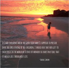 #RachelCarson #wisdomwednesday #beach #inspiration #sunset #playinginthewaves #artsbridge