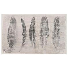 Tableau - Cinq plumes