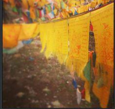 By Dominique Schepers. Tibetan prayer flags. Tibet 2014