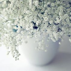 You know, normally I can't stand baby's breath - as clichéd as that sounds - but on it's own it's rather pretty.