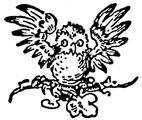 Baby Owl Rubber Craft Stamp - Rubber Stamps Direct http://www.stampsdirect.co.uk/baby-owl-rubber-stamp-570-p.asp
