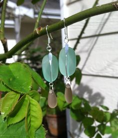 Mint and Champagne Sea Glass Earrings by SmithNJewels on Etsy