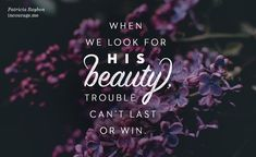 Looking for Beauty in the Broken