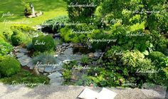Südseitiges Terrassenbeet mit Gartenteich und Pflanzplan