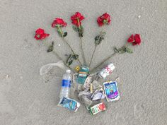 """A bouquet for the beach."" Someone had a date last night and left a trail of long stem red roses every 30 feet on the beach. And check out the variety of empty drink containers I picked up on the beach this morning. Hello, people! What are the crabs, sea gulls, pelicans, sea turtles, and dolphins going to do with all of this human trash? Wake up, and smell the roses! We can do better than this! 9.6.14 ♥︎ Mommy Moo Moo"